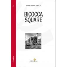 """""""Bicocca Square"""" di Guido Arturo Tedeschi"""